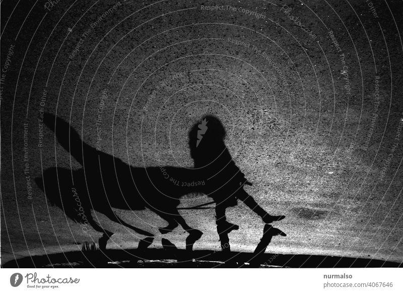 Schwarzes Pferd Esel pferd führen. reiten reiter Schatten führer leine eltern freudig kimd Erwachsener gegenlicht