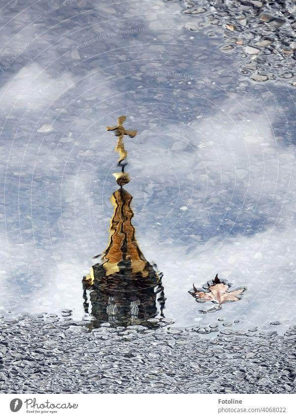 Berlins Pfützen III - Gülden Wasser Reflexion & Spiegelung nass Außenaufnahme Menschenleer Farbfoto Straße Wetter schlechtes Wetter Regen Tag Verkehrswege