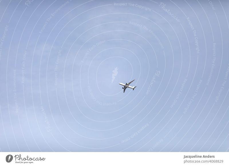 einzelnes Flugzeug fliegt am Himmel fliegen Wolken Luftverkehr blau Ferien & Urlaub & Reisen Passagierflugzeug Außenaufnahme Farbfoto Tourismus Menschenleer
