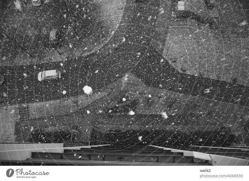 Fallbeispiel Schneeflocke kalt dunkel Schneefall Winter Außenaufnahme Detailaufnahme Menschenleer Textfreiraum oben Textfreiraum rechts Textfreiraum unten