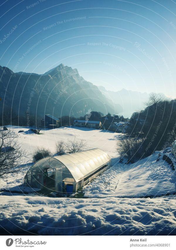 Morgendlicher Start zur Arbeit, mit Blick auf Schweizer Berge, im winterlichen Frühling. Schnee Sonnenlicht Morgendämmerung Morgennebel Alpen Walensee Himmel