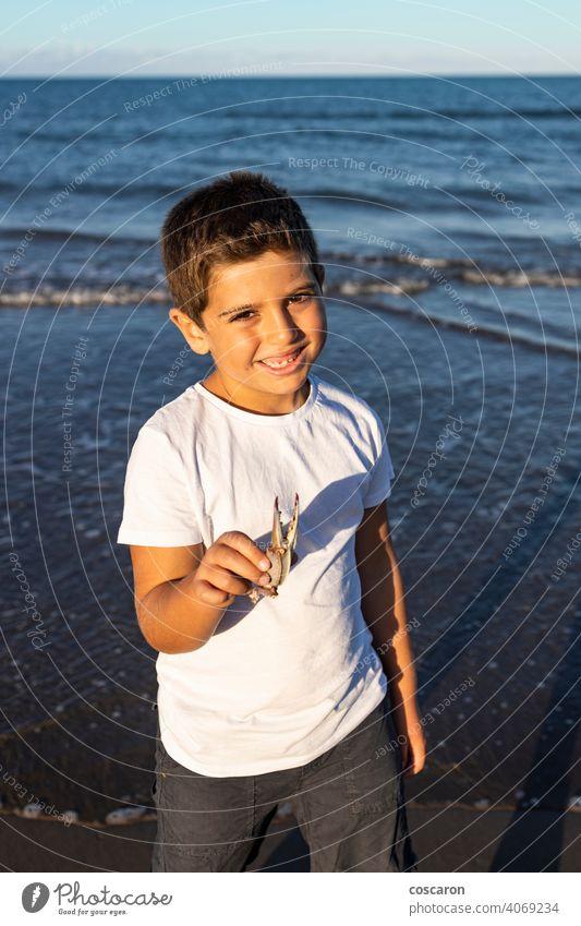Lustiges Kind zeigt ein Krabbenbein am Strand Tier schön Junge fangen Kaukasier Krallen Küste Küstenlinie Schmarotzerrosenkrebs niedlich Hand Glück Beteiligung