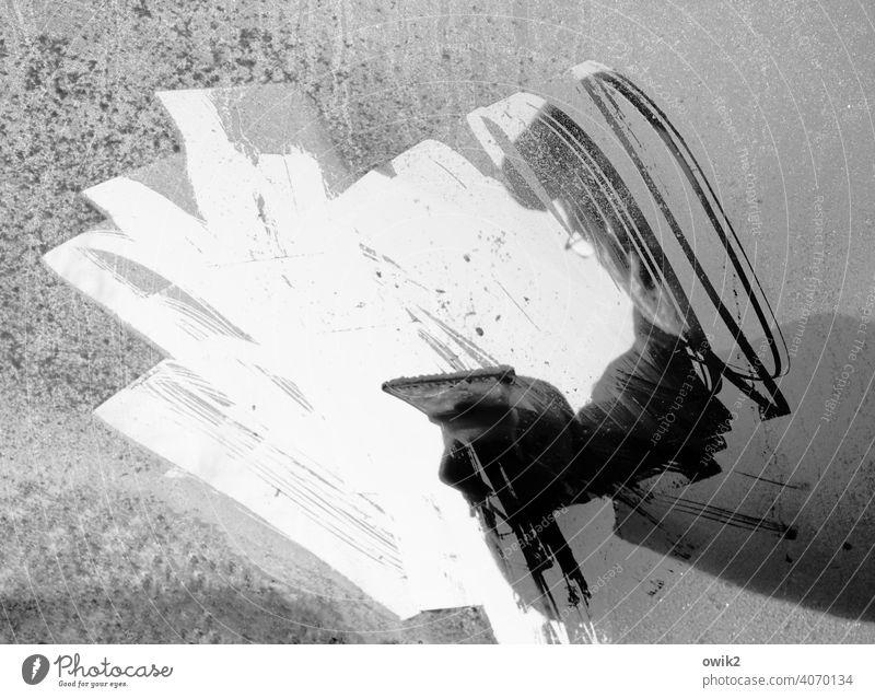 Eiskratzer PKW Glas Frontscheibe Winter Auto Glasscheibe vereist kalt frostig kratzen gefroren unangenehm mühevoll mühsam entfernen Außenaufnahme Farbfoto