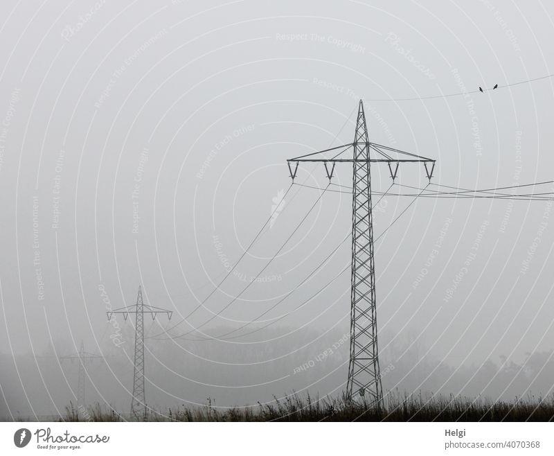 Strommasten mit Stromleitungen im Nebel Stromtrasse CO2 Energiewirtschaft Elektrizität Umwelt Außenaufnahme Technik & Technologie Kabel Hochspannungsleitung