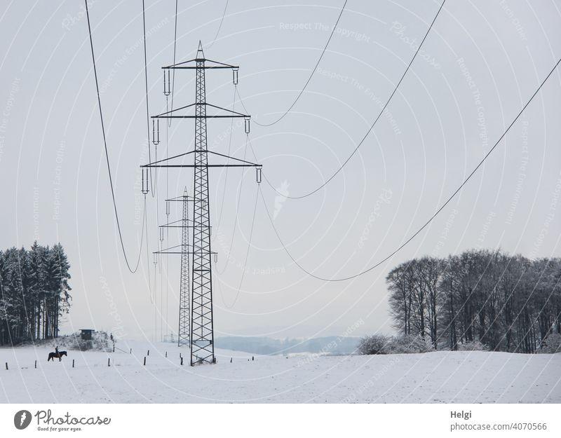 Strommasten in winterlicher Landschaft Energie Elektrizität Energiewirtschaft Hochspannungsleitung Kabel Leitung Industrie Umwelt Stromtrasse Winter Schnee