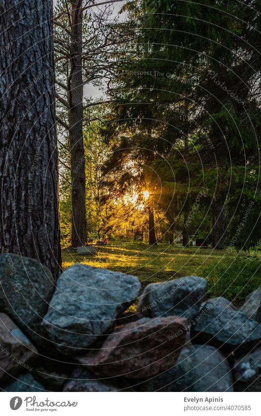 Vertikales Foto von Sonnenuntergang in europäischen Landschaft Friedhof mit Felsen Zaun und Kiefern umgeben Stein Steinzaun Europa fallen Hof kärdla hiiumaa