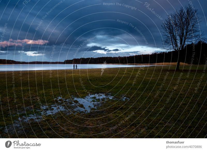 Vorfrühlingsabend in Brandenburg, am See, mit Pfütze und bedrohlichem Himmel Frühling Spiegelung Paar Menschen Gewitter Reflexion & Spiegelung Wasser
