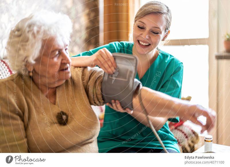 Pflegerin misst den Blutdruck einer Seniorin zu Hause echte Menschen offen Frau reif Kaukasier älter heimwärts alt Alterung häusliches Leben Großmutter