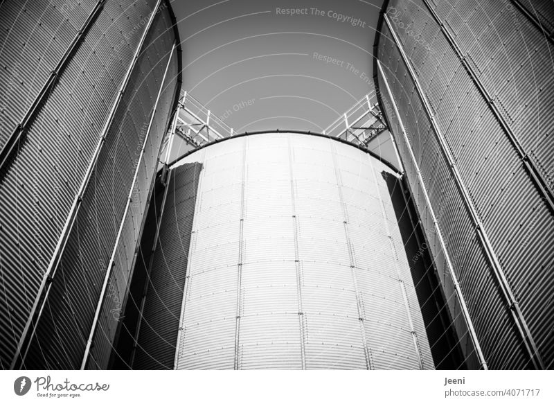 Silos für die Einlagerung von Getreide an einer verlassenen Hafenanlage Getreidesilo Behälter Behälter u. Gefäße Türme Turm Getreideernte Getreideprodukte