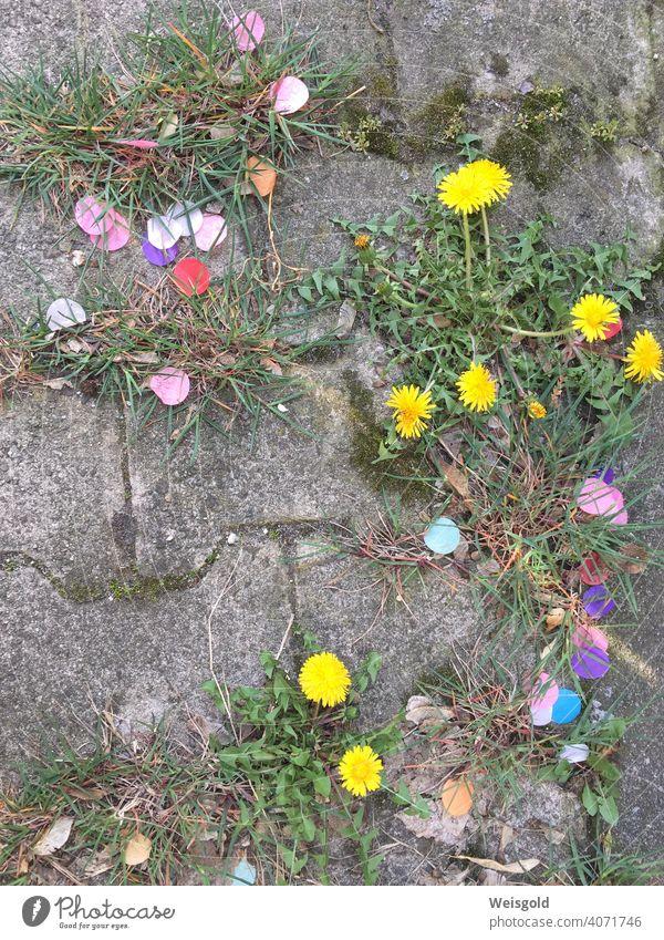 Konfetti und Blumen auf Steinboden Straße bunt gemischt Freude skurril humorvoll Stadtraum Pflanzen Gras Sommer Lebensfreude Farbfoto Natur Frühling Hoffnung