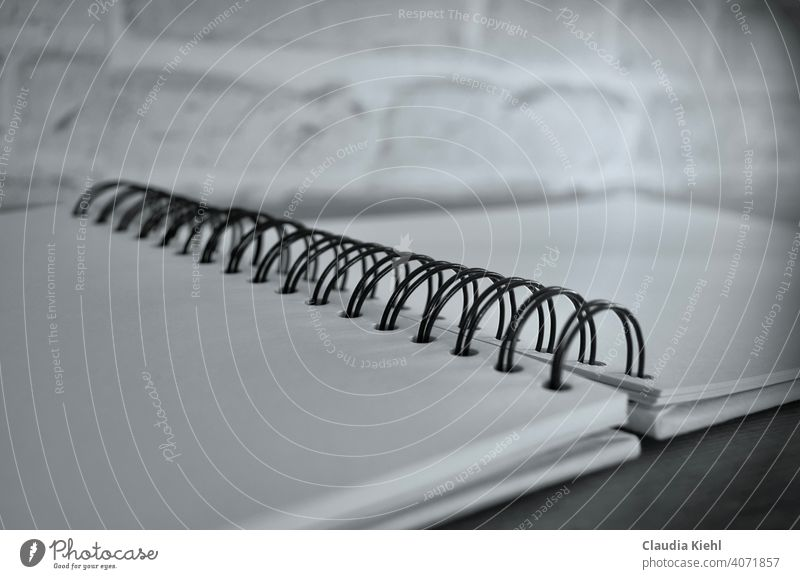 unbeschriebenes Buch Buchseite unbeschriebenes blatt leer stehend aufgeschlagenes Buch Offenes Buch Kreativität schreiben Schwarzweißfoto schwarz weiß S/W