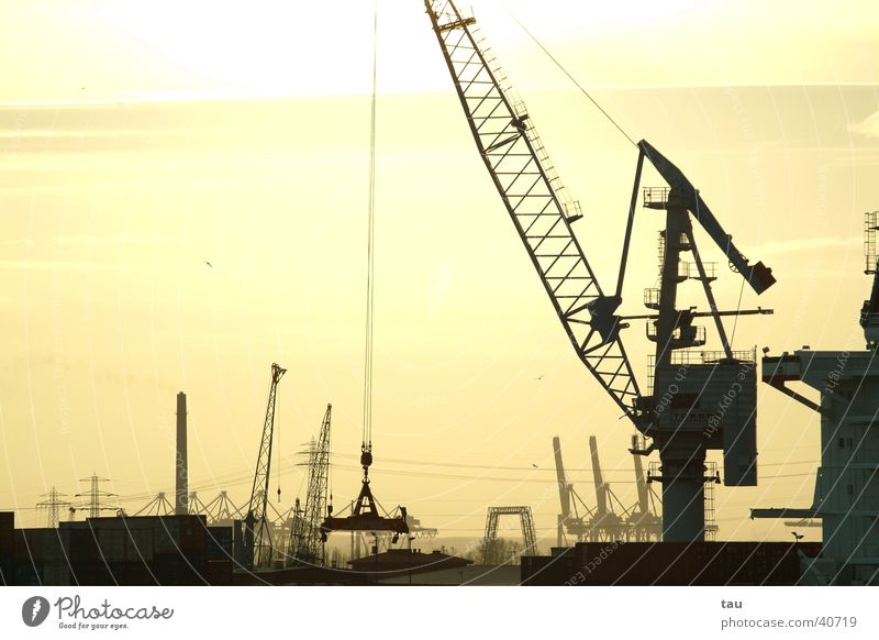Hafen Hamburg Kran Ladung Wasserfahrzeug Dock Sonnenuntergang Gegenlicht Ferne Elektrisches Gerät Technik & Technologie Container Tele Schiffswerft