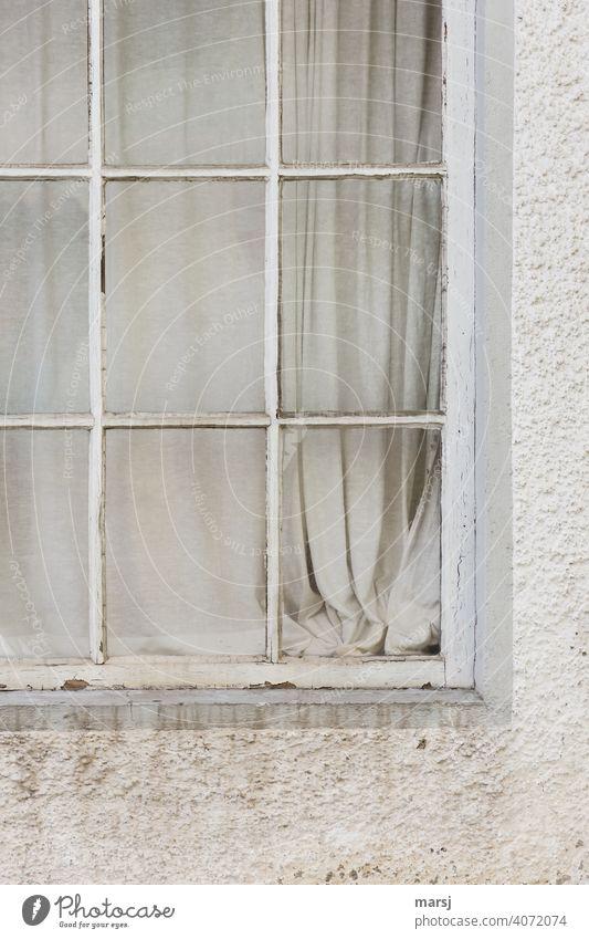 Fenster zur grau-weißen Vorhangwelt. Altes, verwittertes Fenster in schmutziger Fassade. alt Haus Einsamkeit verfallen Putz Angst Traurigkeit gruselig