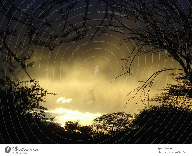Wilde Wildnis Wolken dunkel mystisch