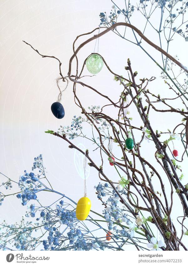 Kirschblütenzweige mit blauem Schleicherkraut und dezenter Osterdekoration Wand weiss Ostern Osterstrauch osterschmuck Osterei Farbfoto Zweige u. Äste