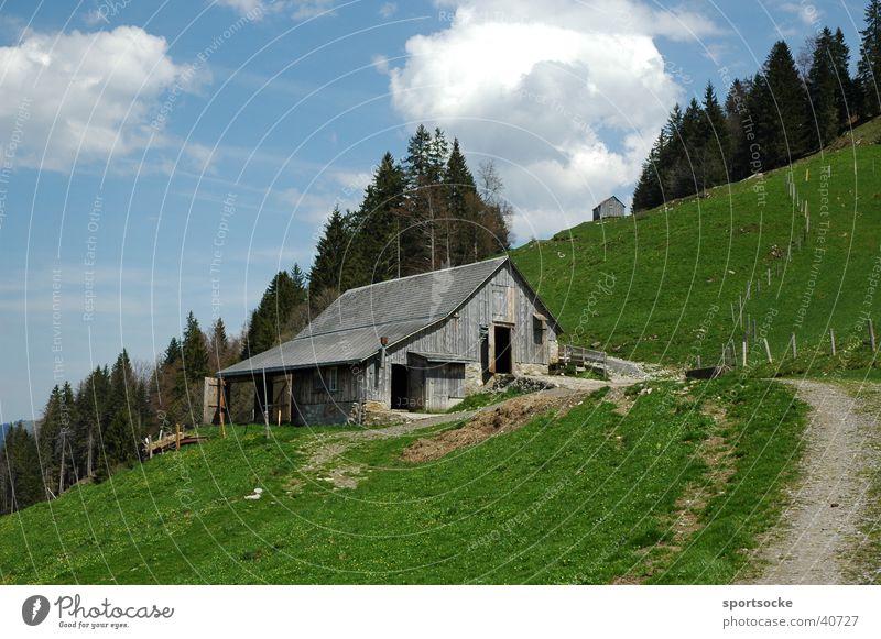 Alpenidylle Berge u. Gebirge Alm Blauer Himmel Sommertag Berghütte