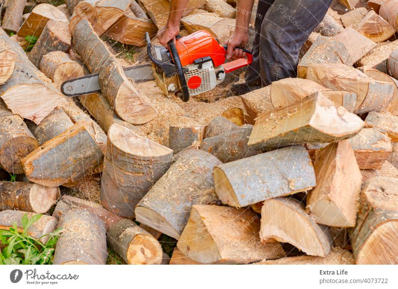 Holzfäller schneidet Brennholz auf dem Hof mit Kettensäge Klinge anketten hacken geschnitten Staubwischen Motor Feller zwängen Gras Boden Haufen Hewer Job