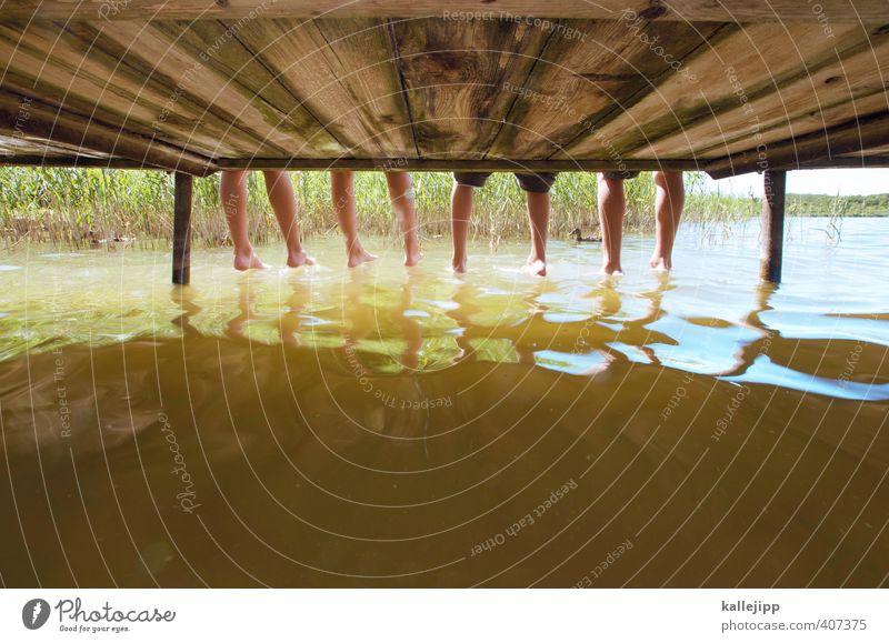tausendfüßler Mensch Kind Natur Wasser Pflanze Sommer Mädchen Landschaft Tier Umwelt Leben Junge Schwimmen & Baden See Beine Fuß