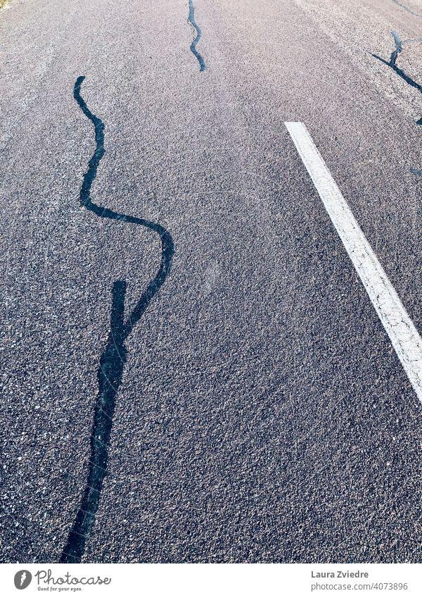 Wieder auf der Straße Straßenverkehr Autofahren Sicherheit Personenverkehr keine Menschen Verkehr Asphalt Stadt Verkehrswege Wege & Pfade
