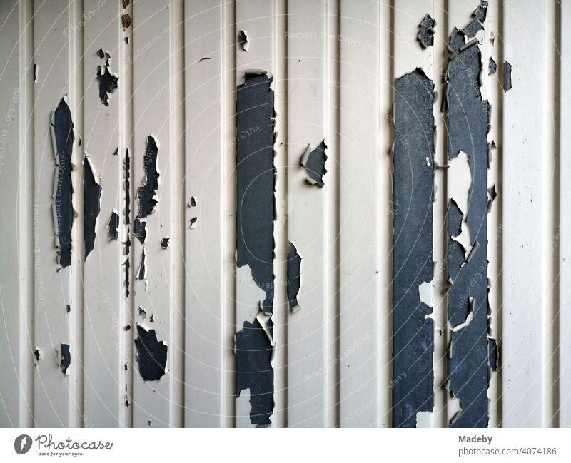 Abblätternde Farbe an einem Garagentor in hellem Beige auf grauem Stahl in Oerlinghausen bei Bielefeld im Teutoburger Wald in Ostwestfalen-Lippe Tor Eisen alte