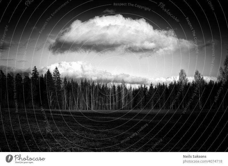 schöne Frühlingslandschaft Schönheit blau Windstille Waldlichtung Wolken Land Landschaft Tag Feld Flora Waldwiese Gras Grasland grün Hügel Feiertag Horizont