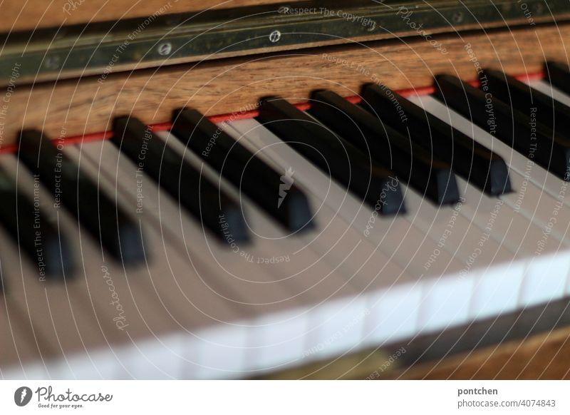 die tasten eines klaviers instrument musik Konzert Musikinstrument Klavier spielen Tasteninstrumente Klaviatur klassische musik Detailaufnahme Freizeit & Hobby