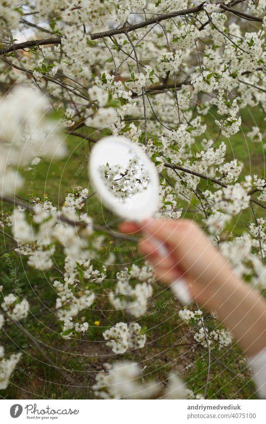 Outdoor-Nahaufnahme von jungen weiblichen Hand hält kleinen Retro-Spiegel in blühenden Garten am Frühlingstag. Model schaut in kleinen Spiegel, posiert auf der Straße, in der Nähe von blühenden Bäumen. Weibliche Mode Konzept