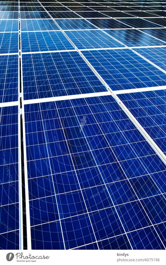 Eine Fläche von vielen photovoltaikmodulen. Solarkraftwerk , viele Solarpaneele , Photovoltaik Sonnenenergie Solarenergie Photovoltaikanlage Solarpanele