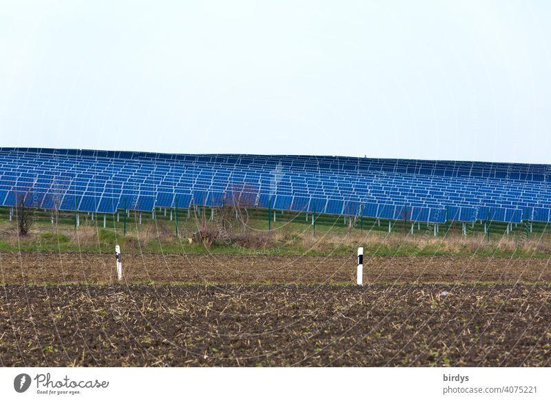 Eine Fläche von vielen photovoltaikmodulen. Solarpark , Solar- Freiflächenanlage inmitten landwirtschaftlicher  Nutzflächen.. viele Solarpaneele , Photovoltaik