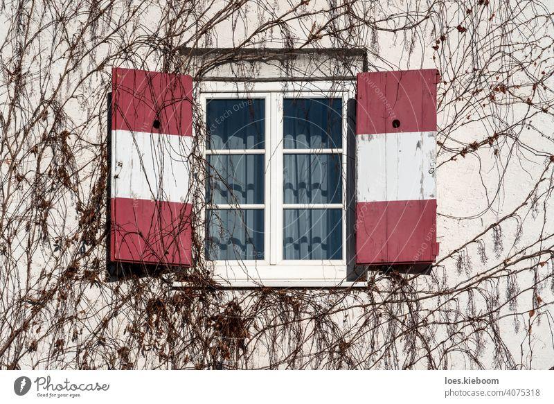 Geöffnete traditionelle Fensterläden mit rot-weißer Österreich-Fahne an der mit blattlosem Efeu umrankten Wand offen retro Winter Fassade Baum Tirol Restaurant