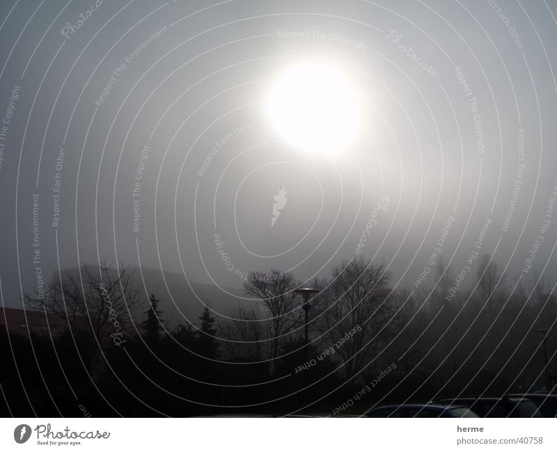 sonnenaufgang im nebel Sonne Wald Nebel