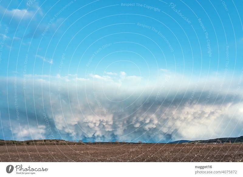 Wallcloud mit Kumuluswolken über Acker wall cloud Himmel Natur Wetter Wolken blau weiß Umwelt Klima Atmosphäre Himmel (Jenseits) Wolkenlandschaft Hintergrund