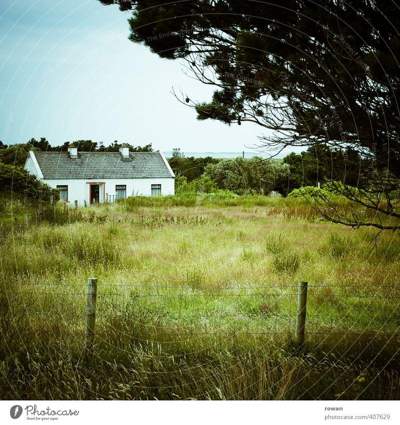 wohnung im grünen Baum Garten Wiese Feld Dorf Haus Einfamilienhaus Gebäude Fenster Tür ruhig Idylle Häusliches Leben Landleben Republik Irland Cottage Zaun