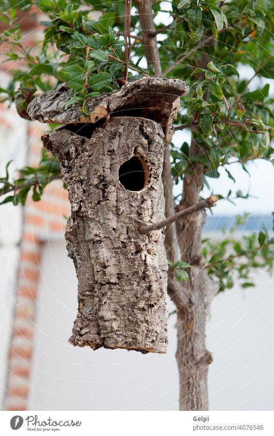 Vogelhaus aus der Rinde eines Baumes gemacht hing heimwärts Nest Natur Holz Haus Ast Kasten Park Futterhäuschen Wald Frühling Golfloch Garten Hintergrund