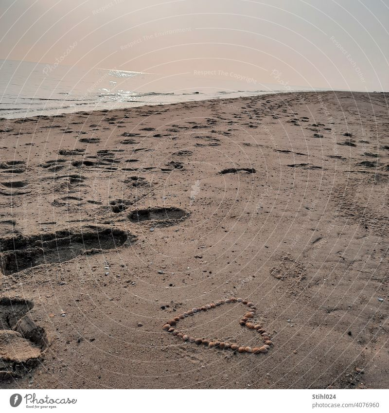 mit Muscheln gelegtes Herz am Sandstrand mit Fußspuren Liebe Liebeskummer verliebt Strand Spuren spazieren gehen Dünung Meer Ostsee Nordsee diesig Wetter