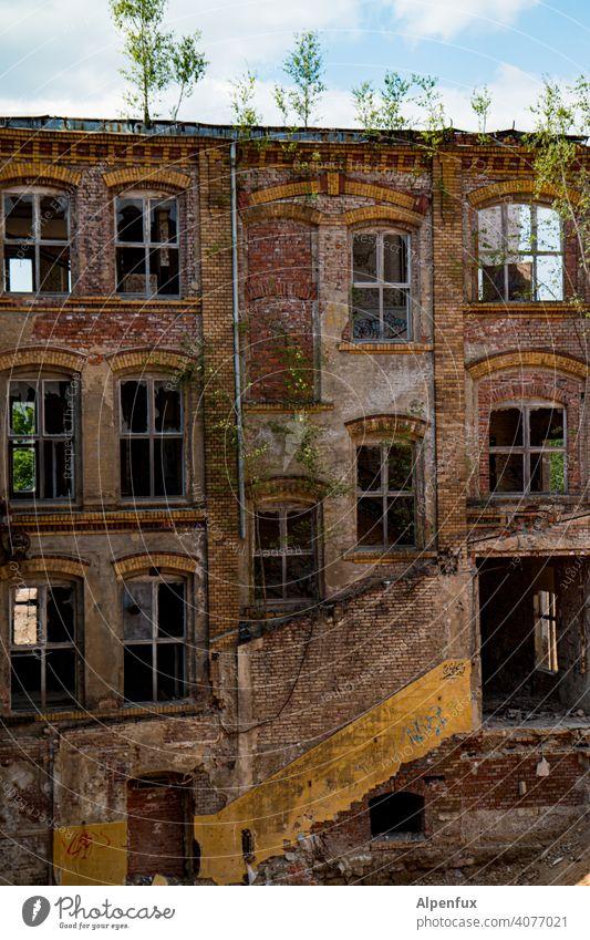 Baumhaus Ruine Architektur alt Haus Vergänglichkeit Zerstörung Verfall kaputt Vergangenheit Renovieren Farbfoto Gedeckte Farben Mauer Fassade Wand Außenaufnahme