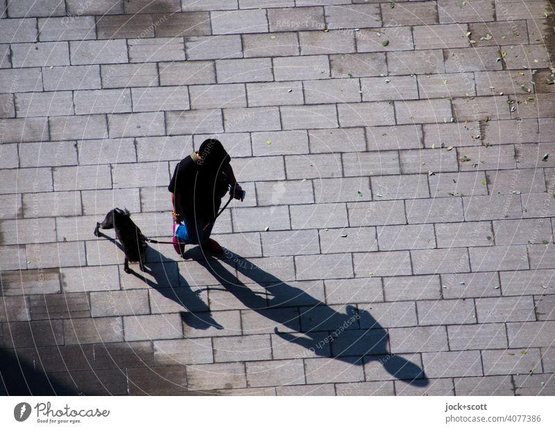 entspannt mit dem Hund vom Gassi gehen wieder zurück Mensch Leine Vogelperspektive Draufsicht Schattenspiel Haustier Pflastersteine Silhouette Gelassenheit
