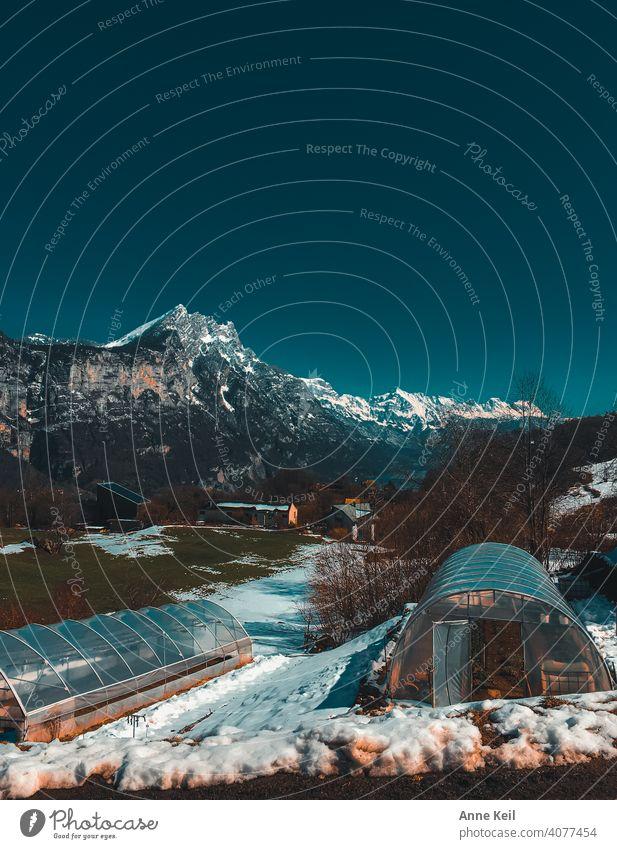 Blick auf die Alpen, Churfürsten, Leistkam... mit Schnee, See und Sonnenschein. Berge Berge u. Gebirge Natur Landschaft Außenaufnahme Farbfoto Himmel