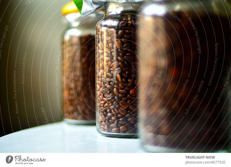 Drei zylindrisch geformte Behälter aus durchsichtigem Glas sind mit frischen Kaffeebohnen gefüllt und stehen diagonal angeordnet auf einem weissen Tisch vor einem grauen Hintergrund