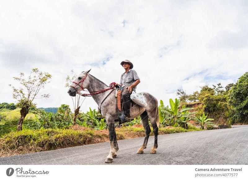 Landwirt Mann reitet Pferd Erwachsener Porträt Viehbestand landwirtschaftlich Ackerbau Tier Tiere Hintergrund Scheune Landschaft Ernte Bodenbearbeitung Kultur