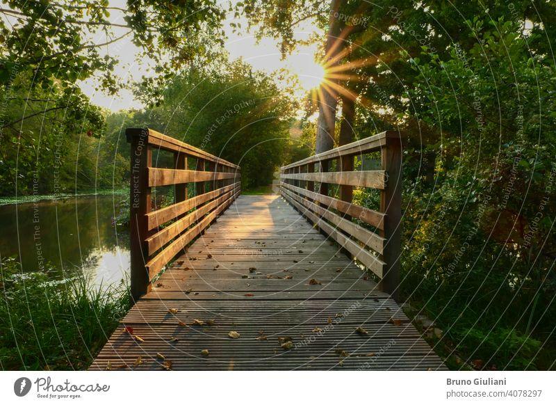 Hölzerne Brücke in der Mitte des Waldes. Strahlen der Sonne durch das Laub der Bäume. Spaziergang in der Natur im Sommer oder Frühling. Abenteuer Hintergrund