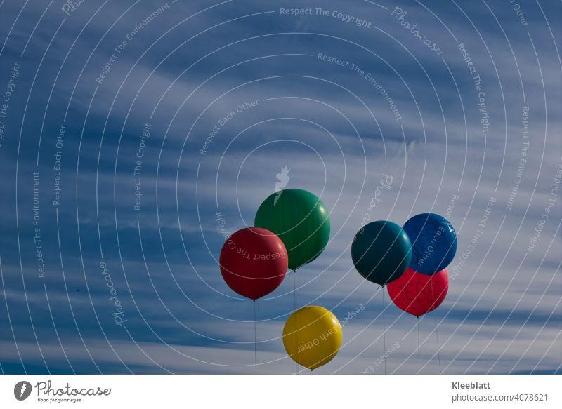 """6 Luftballons in den Farben Rot - Grün - Dunkelgrün - Blau - Gelb - Orange schweben in den Blauweißen Himmel - der Rote trägt die Aufschrift """"LIEBE"""" bunt"""
