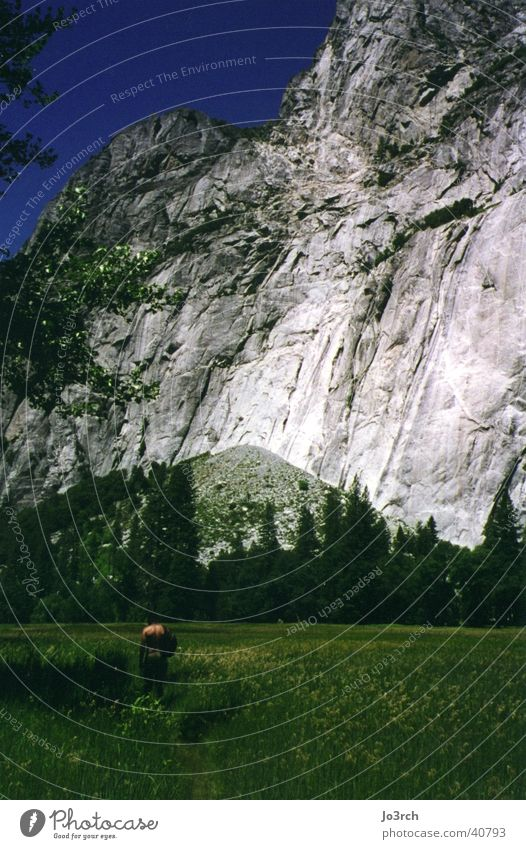 Der Berg Wiese Amerika Ferien & Urlaub & Reisen wandern Berge u. Gebirge Yosemite Park USA