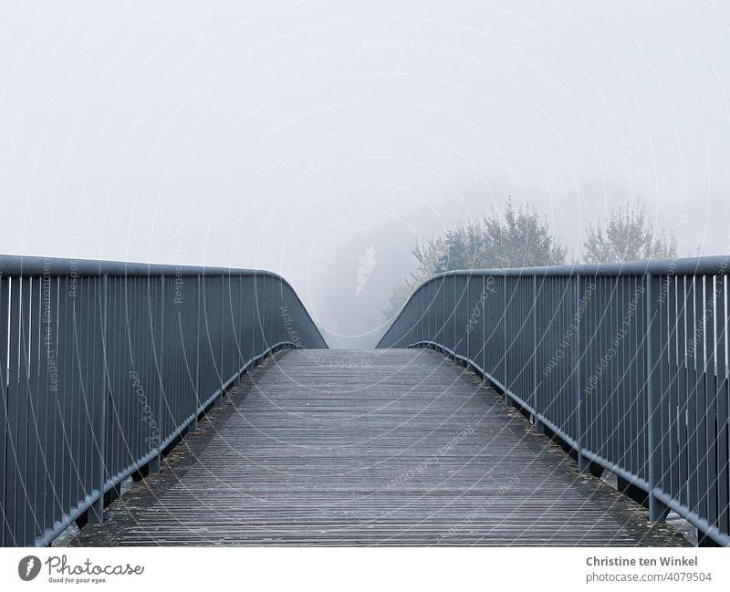Blick über die leicht gebogene Fußgängerbrücke in Bäume, die schemenhaft im dichten Nebel zu erkennen sind Brücke Wege & Pfade Fußgängerübergang Nebelstimmung