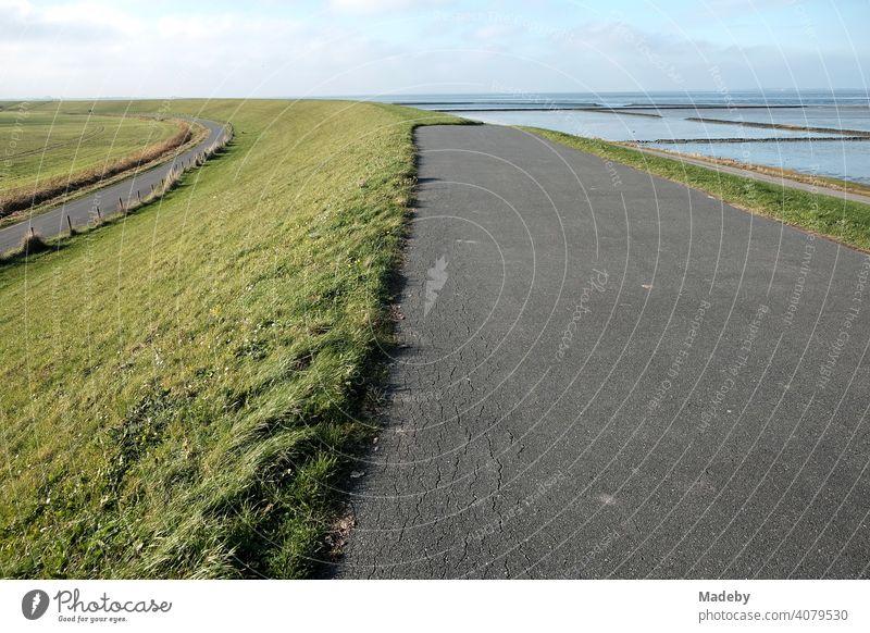 Asphaltierte Wege auf und neben dem grünen Deich im Herbst bei Sonnenschein in Bensersiel bei Esens an der Küste der Nordsee in Ostfriesland in Niedersachsen