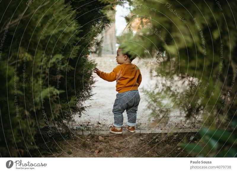 Kind erkundet den Park Kindheit Kaukasier Rückansicht 1-3 Jahre Farbfoto Kleinkind Mensch Lifestyle Freude Spielen Fröhlichkeit mehrfarbig Tag erkunden Natur