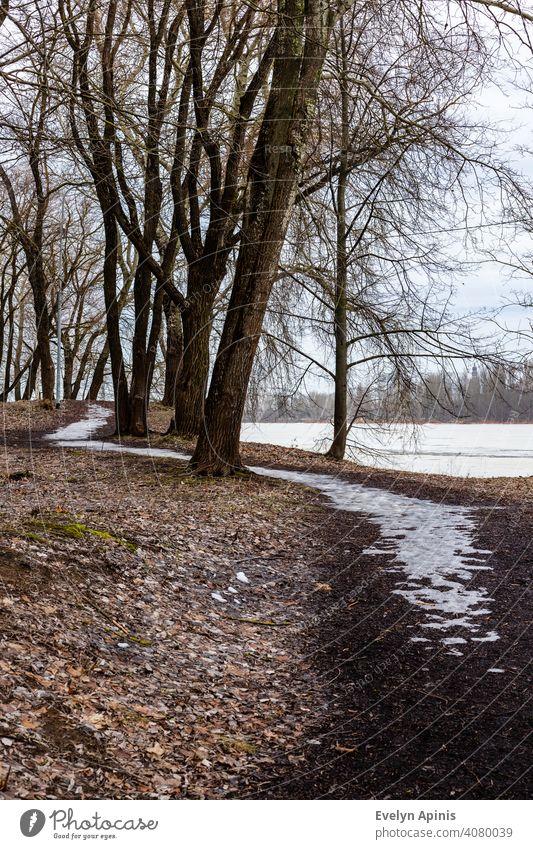 Vertikales Foto eines gefrorenen Weges im Park zwischen Bäumen in der Nähe des gefrorenen Flusses im frühen Frühling, wenn alles noch grau ist, aber der Schnee geschmolzen ist.