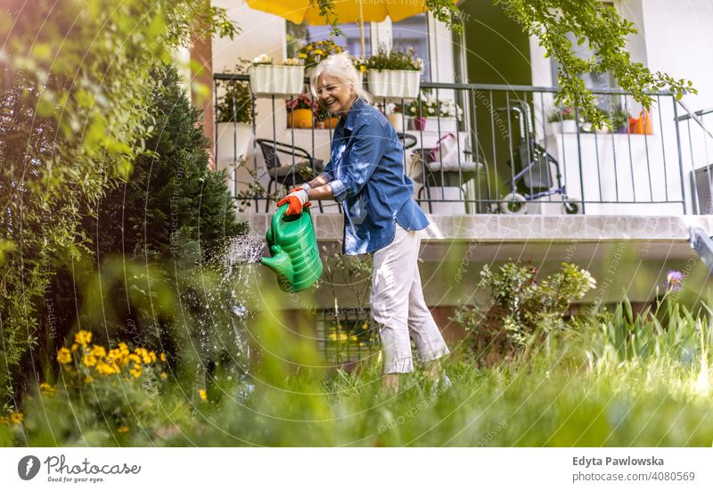Ältere Frau bewässert Pflanzen in ihrem Garten im Freien Hinterhof außerhalb Rasen Gras arbeiten Hof Gartenarbeit Natur Hobbys Gärtner genießend aktiv