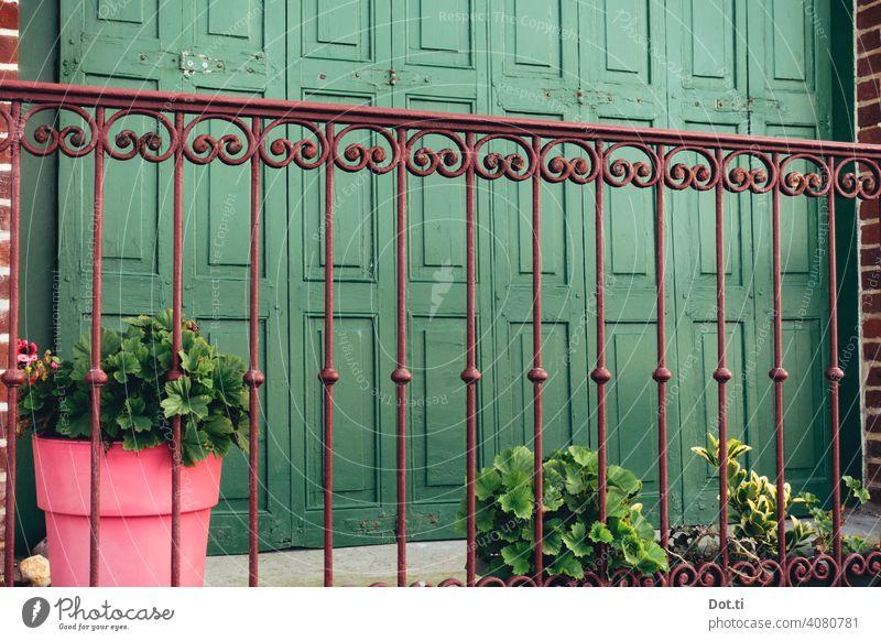 Balkon-Brüstung Gitter balkonbrüstung verzierung Ornament fensterläden Geranien Blumentopf Altbau grün pink Außenaufnahme Wand Fassade Haus Menschenleer alt