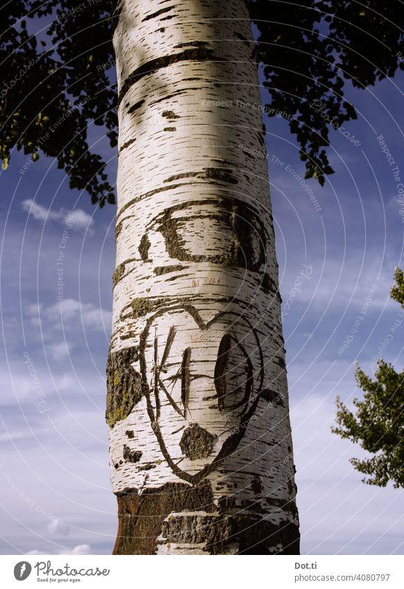 Birken-Liebe forever Baumstamm Rinde Natur Außenaufnahme Menschenleer Tag Farbfoto Herz Baumrinde Buchstaben initiale eingeritzt verewigt Andenken Jugendsünde